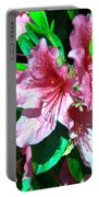 Pink And Green Portable Battery Charger