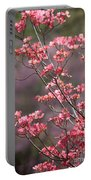 Pink And Purple Spring Trees Portable Battery Charger by Carol Groenen