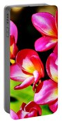 Pink And Red Plumeria Portable Battery Charger