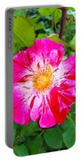 Pink And Red Striped Rose Portable Battery Charger