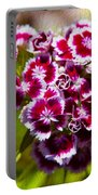Pink And White Carnations Portable Battery Charger