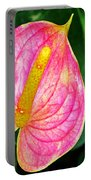 Pink Anthurium Portable Battery Charger