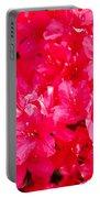 Pink Azalea's Portable Battery Charger