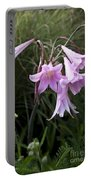 Pink Belladonna Lily - Naked Lady - Belladonna Amaryllis  Portable Battery Charger