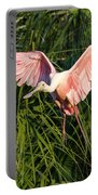 Pink Bird Flying - Spoonbill Coming In For A Landing Portable Battery Charger