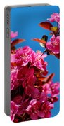 Pink Blossoms Blue Sky 031015aa Portable Battery Charger