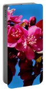 Pink Blossoms Closeup 031015a Portable Battery Charger