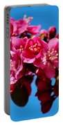 Pink Blossoms Closeup 031015ab Portable Battery Charger