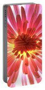 Pink Burst Portable Battery Charger