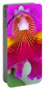 Pink Cattelaya Orchid Portable Battery Charger