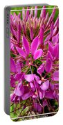 Pink Cleome Flower Portable Battery Charger