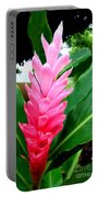 Pink Cone Ginger Portable Battery Charger