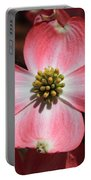Pink Dogwood At Easter 5 Portable Battery Charger