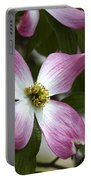 Pink Dogwood Blossom Up Close Portable Battery Charger