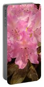Pink Fiesta Portable Battery Charger