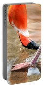 Pink Flamingo At A Zoo In Spring Portable Battery Charger