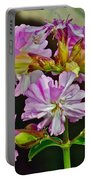 Pink Flower On Brier Island In Digby Neck-ns Portable Battery Charger