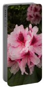 Pink Flowers In Spring Portable Battery Charger