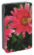 Pink Gerbera Daisy Portable Battery Charger