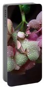 Pink Green And Rain Portable Battery Charger