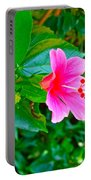 Pink Hibiscus Near Celadon Factory In Chiang Mai-thailand Portable Battery Charger