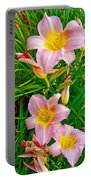 Pink Lilies Near Ottawa-on Portable Battery Charger