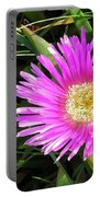 Pink Mesembryanthemum  Portable Battery Charger