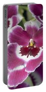 Pink Pansy Orchid Portable Battery Charger