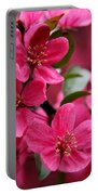Pink Plum Blossoms Portable Battery Charger