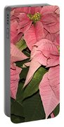 Pink Poinsettias Close-up Portable Battery Charger
