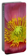 Pink Poppy Rhapsody  Portable Battery Charger