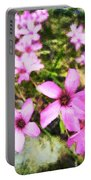 Pink Propellers  Portable Battery Charger