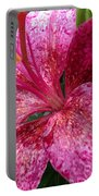 Pink Rain Speckled Lily Portable Battery Charger