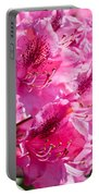 Rhododendron Called Azalea Bright Pink Flowers  Portable Battery Charger