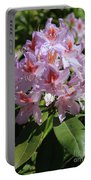 Pink Rhododendron In Sunshine Portable Battery Charger