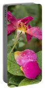 Pink Rose And Its Petals Portable Battery Charger