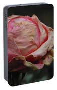 Pink Roses In The First Snow I I I Portable Battery Charger