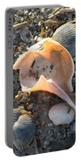 Pink Shell Bowl Portable Battery Charger