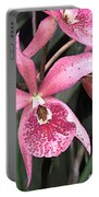 Pink Spotted Cattleya Orchids Portable Battery Charger