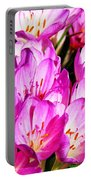 Pink Summer Blossoms Portable Battery Charger