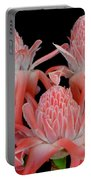 Pink Torch Ginger Trio On Black Portable Battery Charger