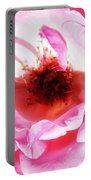 Pink Tourmaline Palm Springs Portable Battery Charger