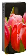 Pink Tulips In A Row Portable Battery Charger