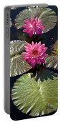 Pink Water Lily IIi Portable Battery Charger by Heiko Koehrer-Wagner