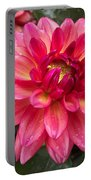 Pink Zinnia Flower Portable Battery Charger