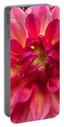Pink Zinnia Flower Upclose Portable Battery Charger
