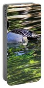 Pintail Portable Battery Charger