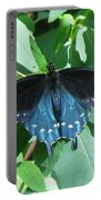 Pipevine Swallowtail Portable Battery Charger