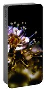 Anthers Portable Battery Charger