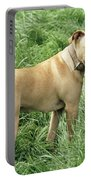 Pit Bull Terrier Dog Portable Battery Charger